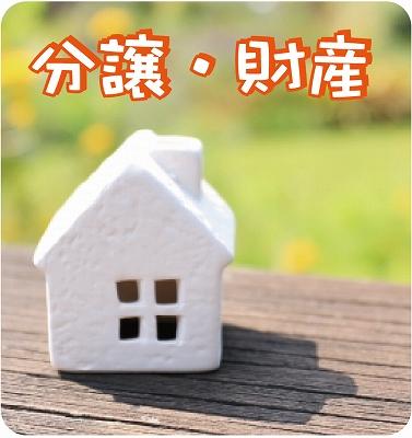 Sale in lots, property